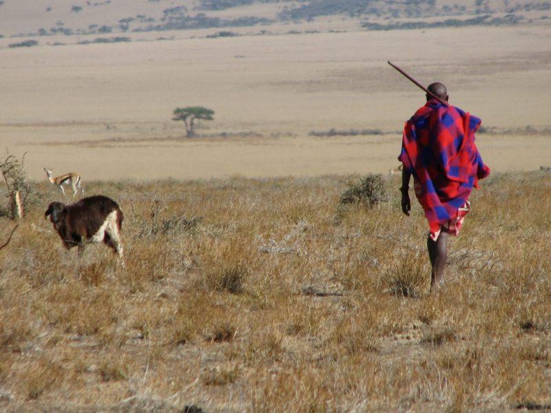 Maasai man Eastern Serengeti, Kenya